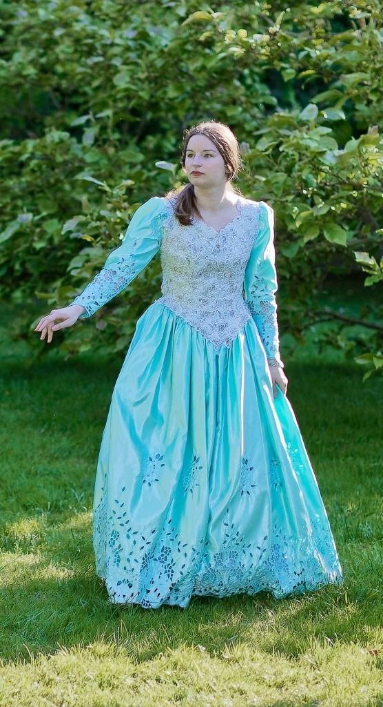 robe de bal XVIIIe brodé